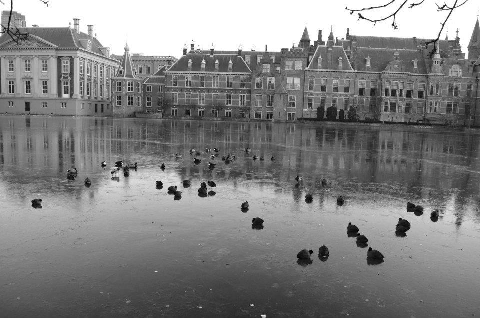 Zamrzlý Haag